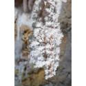cristaux d'aragonite Clamouse