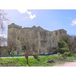 Abbaye de Montmajour (13)