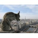 GargouilleTours Cathédrale de Paris