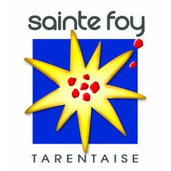 Forfait de Ski St Foy de Tarentaise