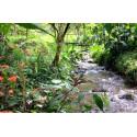 séjour pleine nature equateur