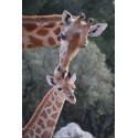 Tarif réduit Zoo de la Barben
