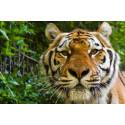 Réduction visite Zoo de la Barben