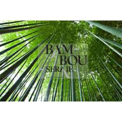 Tarif Bambouseraie Anduze moins cher