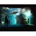 Tarif entrée Aquarium de la Rochelle pas cher