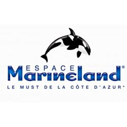 Hôtel billet Parc Marineland moins cher