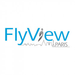 Flyview Paris simulateur survol Paris