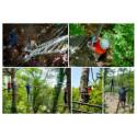 -20% ticket forêt Adrénaline Carnac