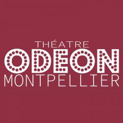 15€ Place Théâtre Odéon moins cher