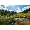 Tarif Bike Park Andorre