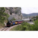 Billet Train des Cevennes visite Bambouseraie Anduze moins cher