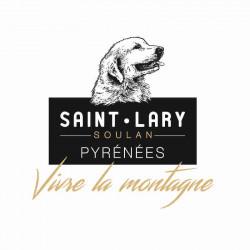 Forfait ski Saint Lary