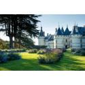 Visite Domaine de Chaumont