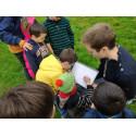 Code réduction Les Décliques Forest Schools
