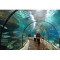 billet réduit Aquarium de Barcelone