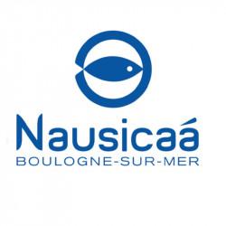 Tarif entrée Nausicaa moins cher
