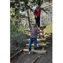 Remise à la forêt d'acrobates